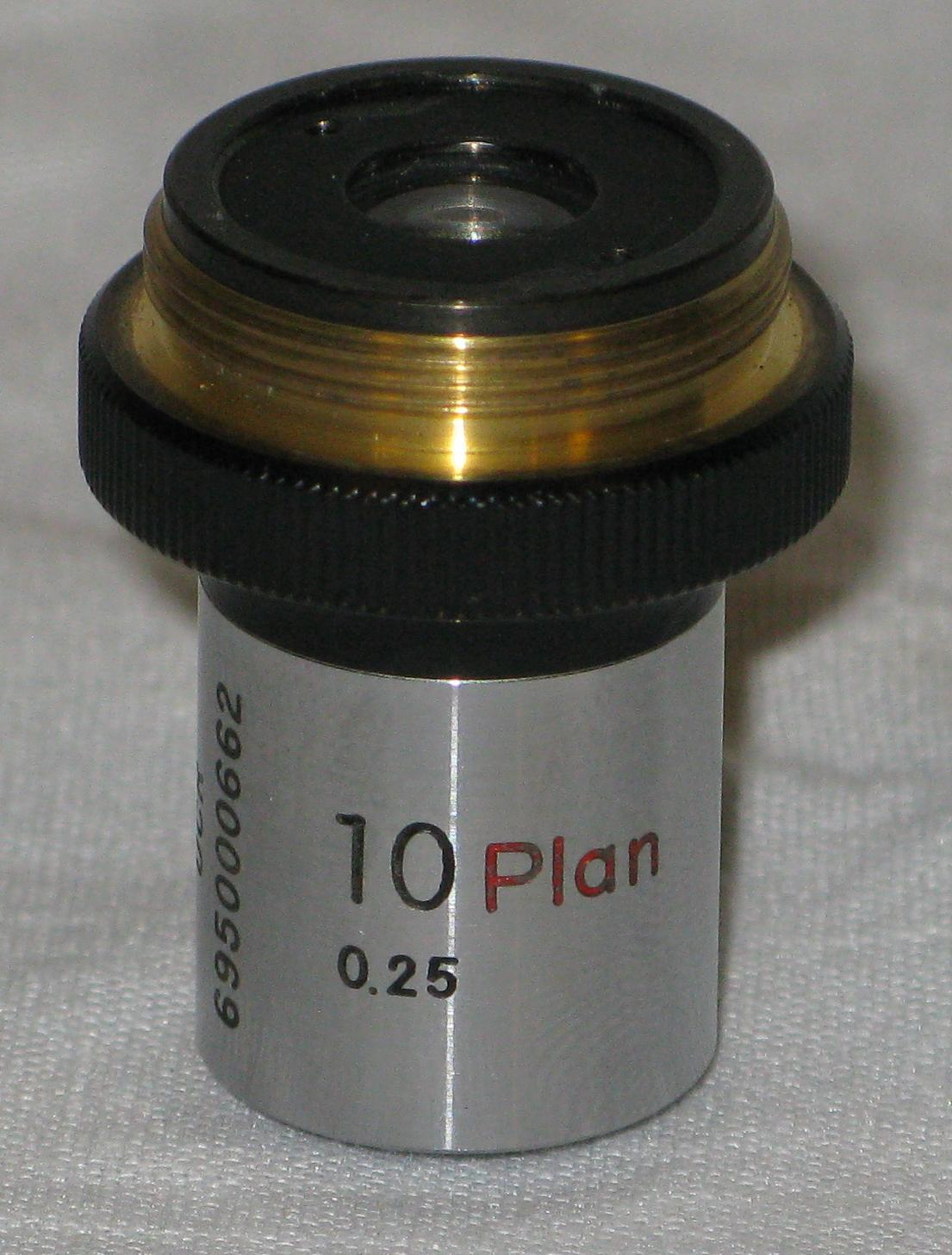 Magnification - Hand-Held Magnifying Lenses - Summit Learning